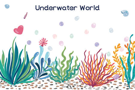 Beautiful vector seaweed, coral, shells, stones, underwater world