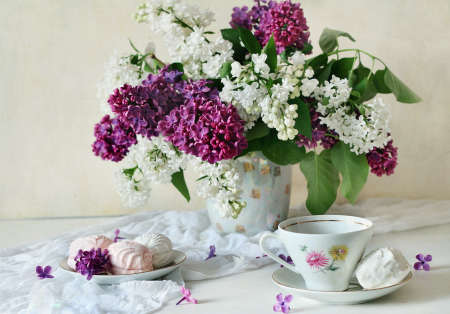 zephyr: Still life with lilac and zephyr
