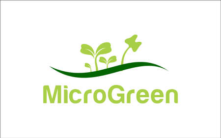 Illustration vector graphic of microgreen healthy inside design template