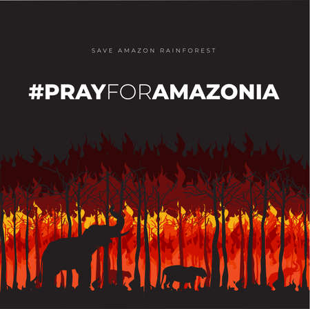 Save Amazonia Forest in Brazil From Fire Disaster Vector Illustration