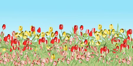 Landscape with red pink and yellow tulips Ilustración de vector