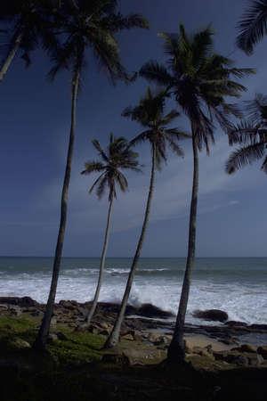 tangalle: Beach in Tangalle, Sri Lanka after tsunami 2004