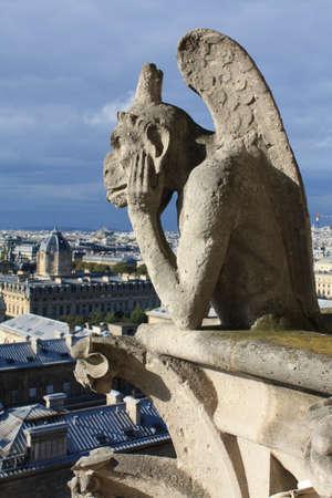 Gargoyle Notre Dame de Paris France