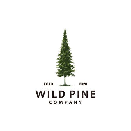 wild pine forest illustration 向量圖像