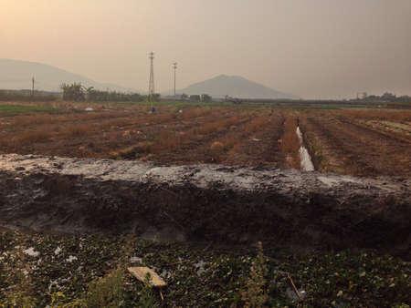 rural area: Mainland Rural Area