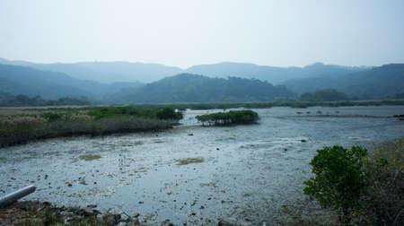 underbrush: Mud in Sha Tau Kok