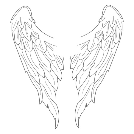 death angel: Set of illustrated wings. Easy to edit and scale to any size.