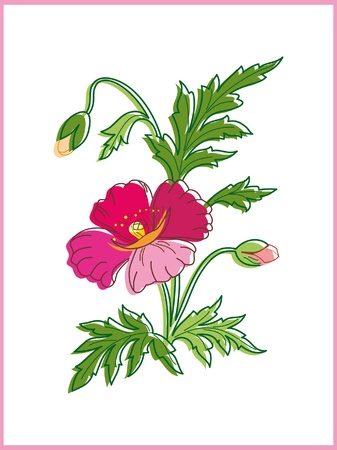 Card with beautiful flower Vector