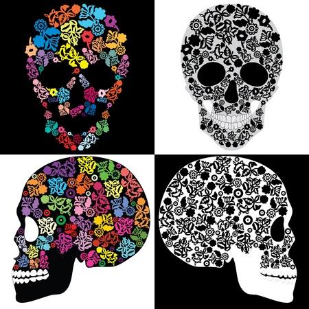 skull and flowers: Cr�neos humanos en las flores, aislado