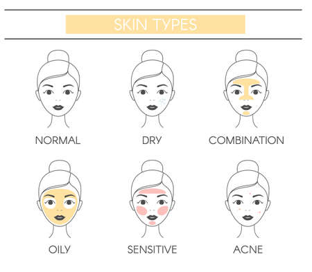 Basic skin types normal, dry, combination, oily, sensitive and acne. Vector elements on a white background