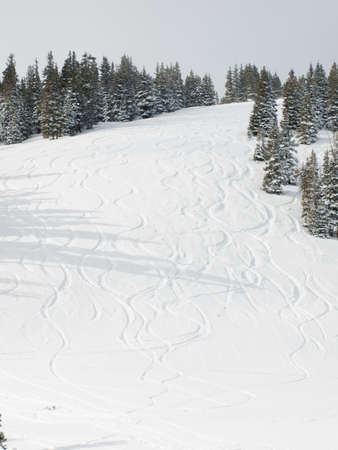 Fresh ski track on mountain side at Berthoud Pass, Colorado. photo