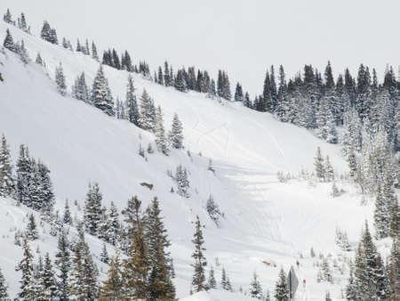 Snowy winter scene high in the mountain. Colorado Rocky Mountains USA. Stock Photo - 8858031