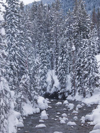 River covered with snow near Granite Hot Springs, Jackson Hole, WY. Stock Photo - 8918466