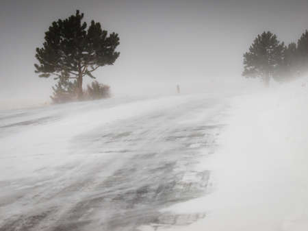 winter road: Snow storm.