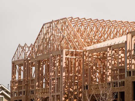 Townhome construction with wood framing. photo