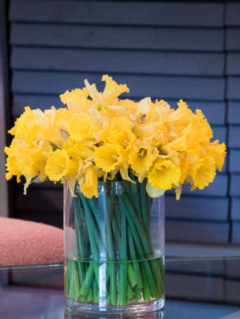 vase: Bunch of yellow daffodils in glass vase on the table.