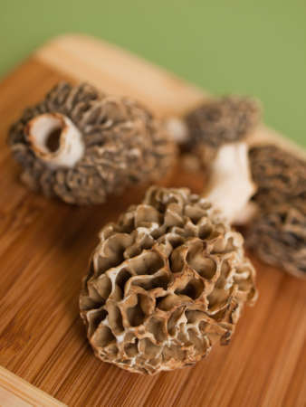 Freshly picked  flavorful morel mushrooms. Shallow DOF. photo