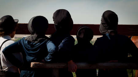 amish: Amish children on the farm.