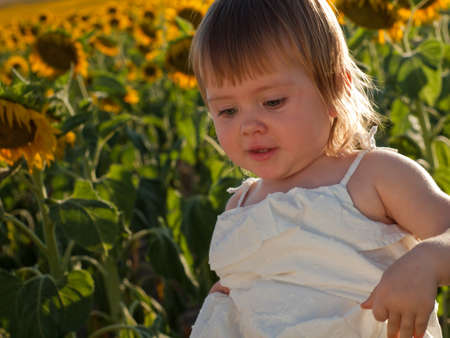 Little girl playing in sunflower field. photo