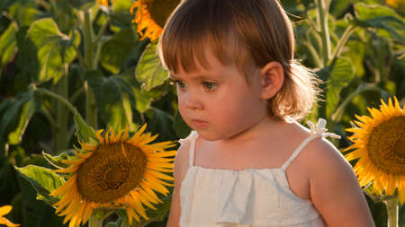 Little girl playing in sunflower field. Stock Photo - 10378150