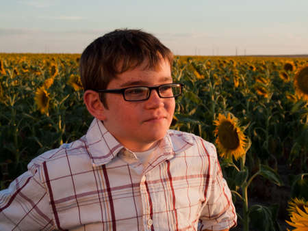Boy in plaid shirt and glasses at sunflower field. photo
