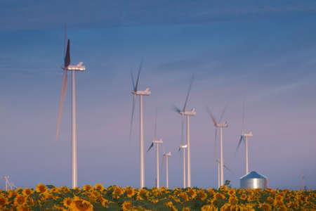 Wind turbines over a beautiful sunflowers field in Limon, Colorado. Stock Photo - 10379396