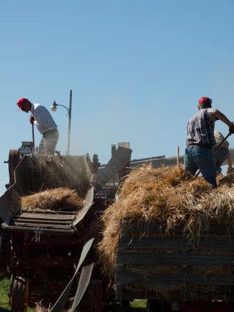 farm equipment: Men harvesting hay with old farm equipment.