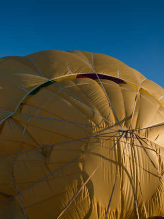 Hot air balloons in a field during a festival in Loveland, Colorado.