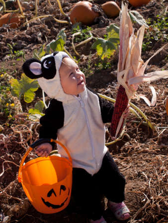 Toddler dressed up in cute costumes at the pumpkin patch. photo