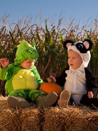 Toddlers dressed up in cute costumes at the pumpkin patch. photo