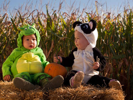 Toddlers dressed up in cute costumes at the pumpkin patch. Stock Photo - 10807224
