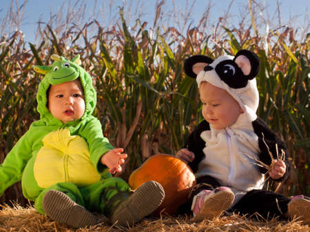 Toddlers dressed up in cute costumes at the pumpkin patch. Stock Photo - 10806765