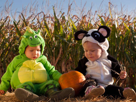 Toddlers dressed up in cute costumes at the pumpkin patch. Stock Photo - 10806618