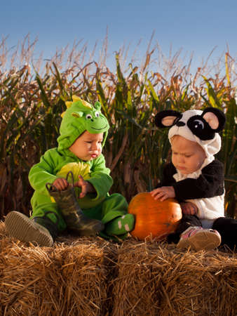 Toddlers dressed up in cute costumes at the pumpkin patch. Stock Photo - 10807246