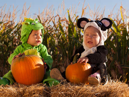 Toddlers dressed up in cute costumes at the pumpkin patch. Stock Photo - 10805875