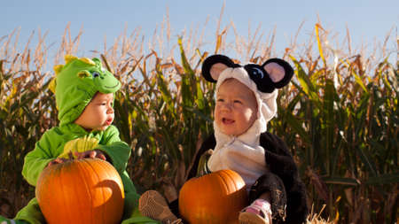 Toddlers dressed up in cute costumes at the pumpkin patch. Stock Photo - 10805682