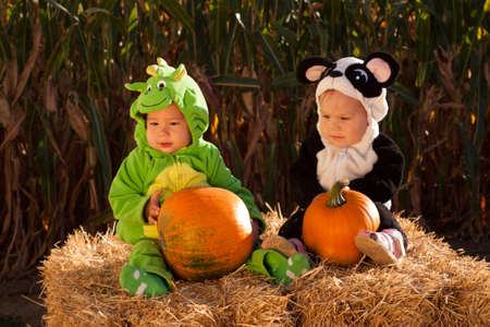 Toddlers dressed up in cute costumes at the pumpkin patch. Stock Photo - 10807099