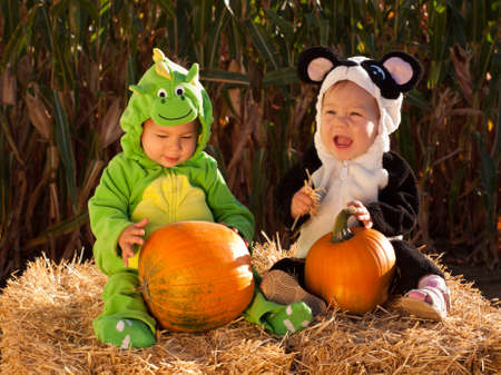 Toddlers dressed up in cute costumes at the pumpkin patch. Stock Photo - 10807100