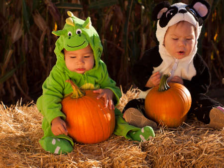 Toddlers dressed up in cute costumes at the pumpkin patch. Stock Photo - 10807103