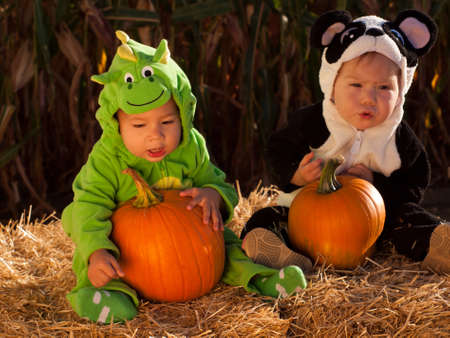 Toddlers dressed up in cute costumes at the pumpkin patch. Stock Photo - 10806843