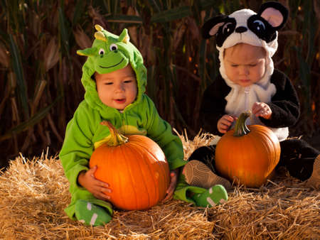 Toddlers dressed up in cute costumes at the pumpkin patch.