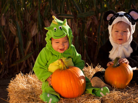 Toddlers dressed up in cute costumes at the pumpkin patch. Stock Photo - 10807094