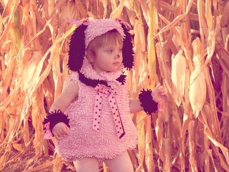 Toddler dressed up in cute costumes at the corn maze. Stock Photo - 10820311
