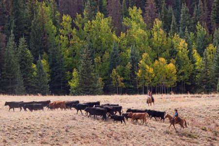 ranchito: Arreo de dos vaqueros en Colorado. Editorial