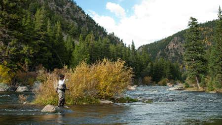 テイラーの川、コロラド州ではえの漁師。