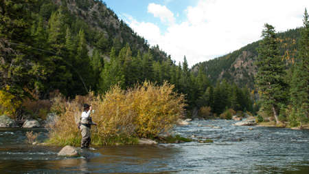 river: Fly fisherman at Taylor River, Colorado.