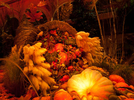 Autumn exhibition in gardens of the Bellagio Hotel, Las Vegas. photo