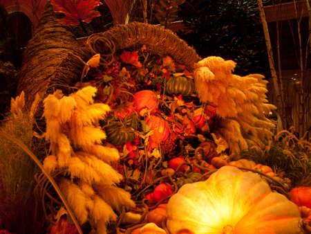 cuerno de la abundancia: Oto�o de exposici�n en los jardines del Hotel Bellagio, de Las Vegas.