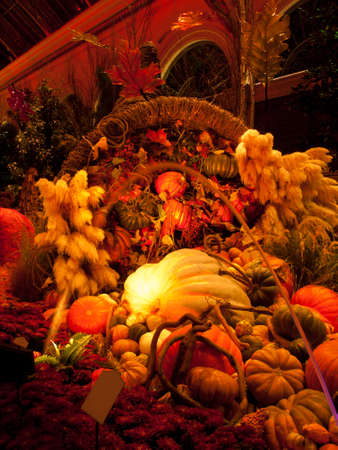 Autumn exhibition in gardens of the Bellagio Hotel, Las Vegas. photo