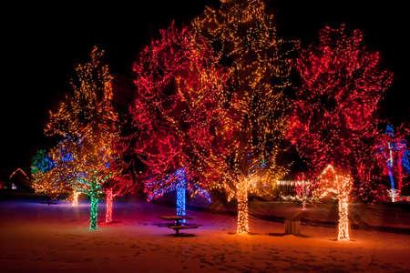 denver botanical gardens: Trail of Lights at Denver Botanical Gardens at Chatfield. Stock Photo